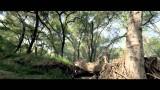 Parkour Roam Free TV commercial